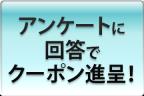 button_questionnaire-K
